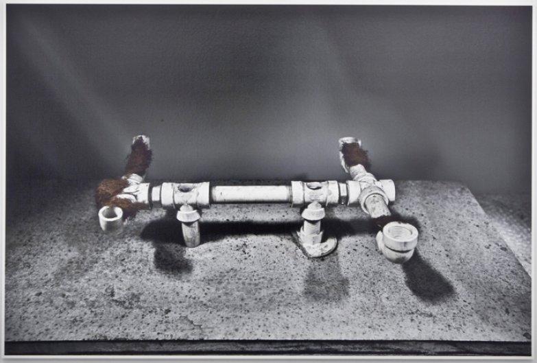 Esqueleto.SofiaBorges