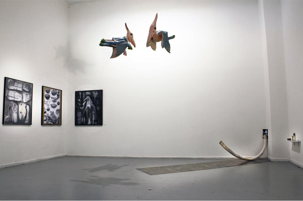 """Vista de la instalación """"De Naturaleza Casera"""" de Patricia dominguez en Sub30. Museo de arte contemporáneo MAC, 2014"""