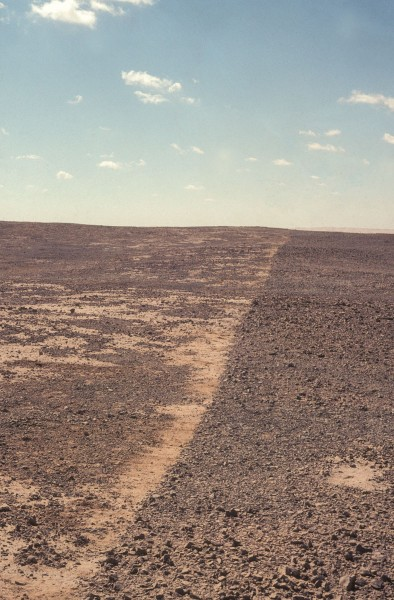 Richard Long, Midday Muezzin Line, Egipto, 2006 © Richard Long. Cortesía: Faena Arts Center