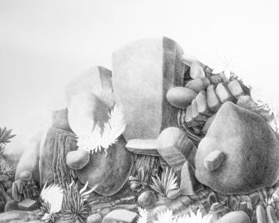 (Ensayo) ¿Naturalismo o ficción? Sobre Memoria Natural de Rolando Cisternas